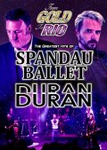 FROM GOLD TO RIO - THE GREATEST HITS OF SPANDAU BALLET & DURAN DURAN